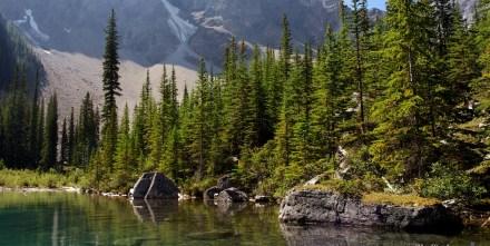 Banff  118