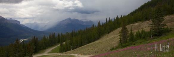 Banff  137