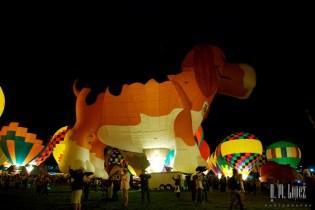 Balloon  312