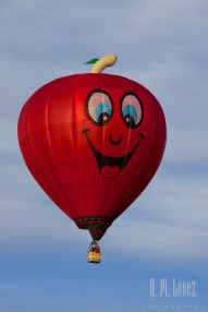 Balloons 170