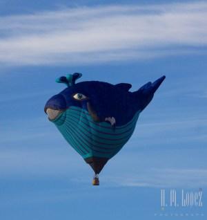 Balloons  173