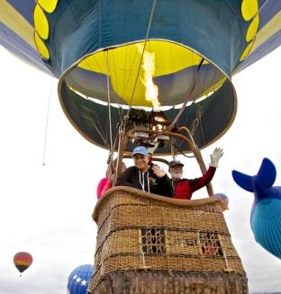 Balloons 241