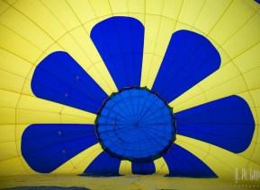 Balloons  256