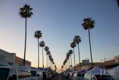 San Diego 2015 9