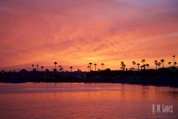 San Diego 15  015