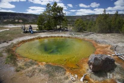 Yellowstone Madison047