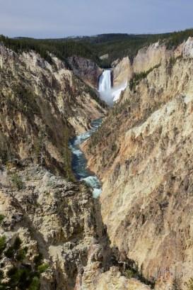 Yellowstone Madison058