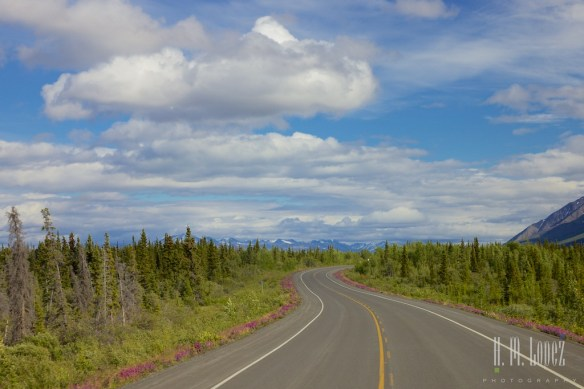 To Haines Junction022