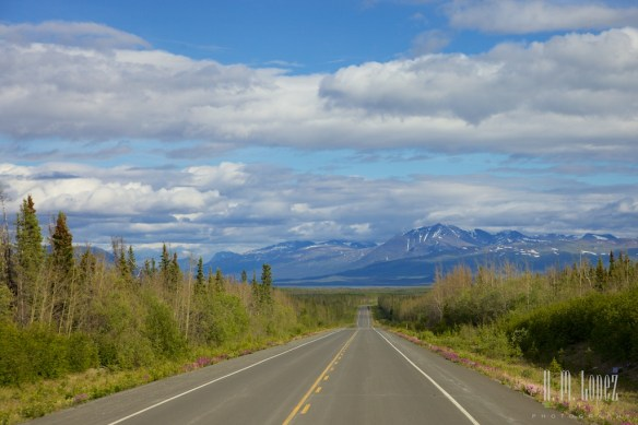 To Haines Junction024
