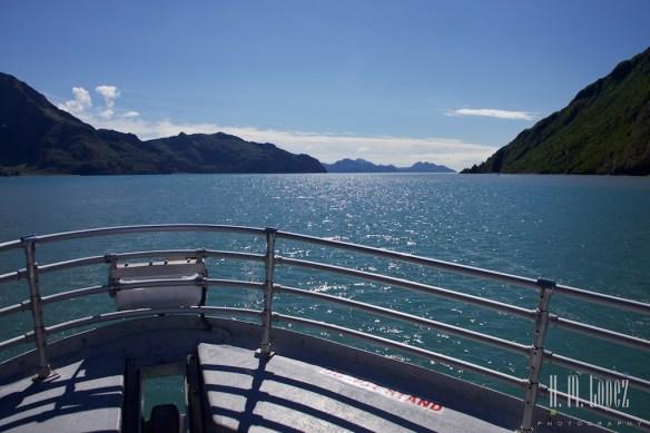 Kenai Fjords NP 51