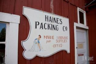 Haines 9