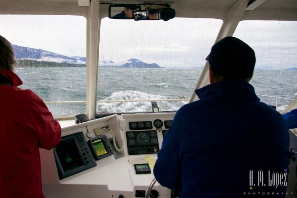 Juneau 14