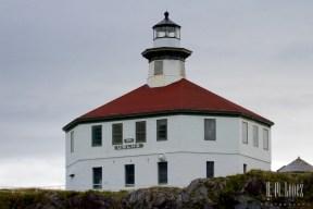 Juneau 50