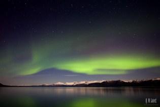 Kluane Aurora 31