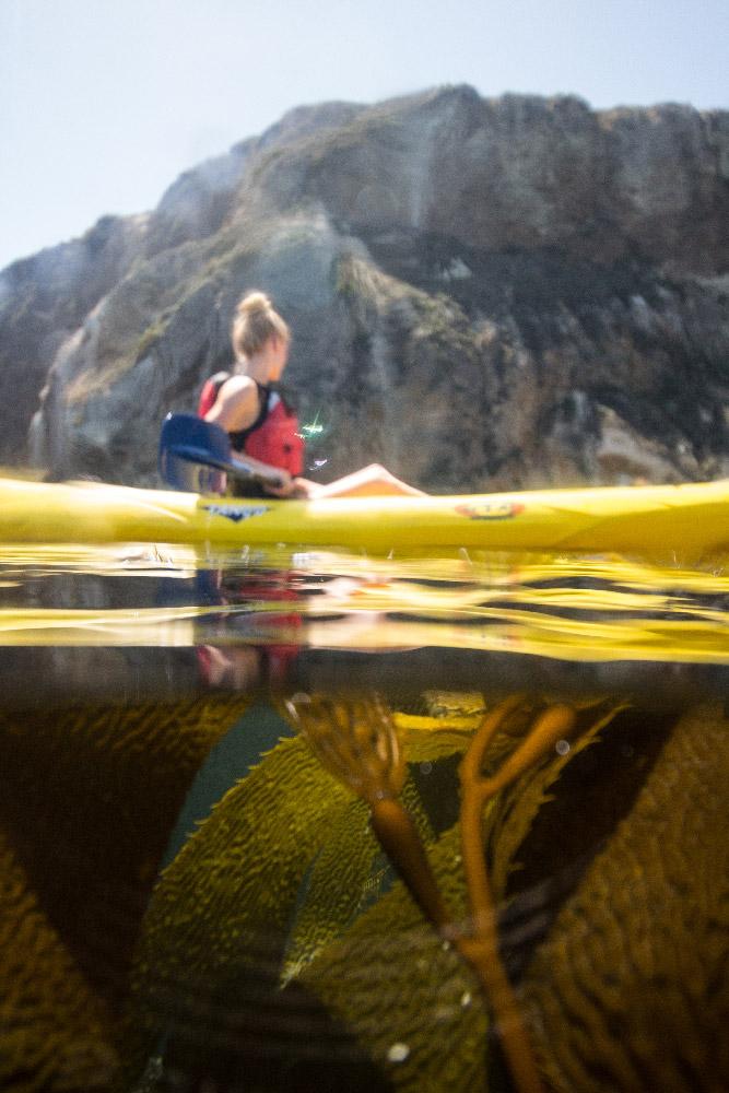 girl kayaking in kelp