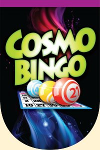 Enjoy Daily Live Bingo Games In Michigans Upper Penninsula