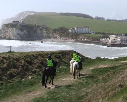 Horses at Freshwater Bay