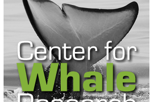 Center for Whale Research