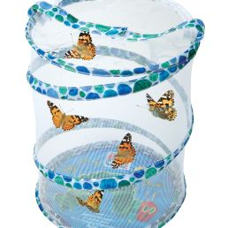 butterfly grow kit