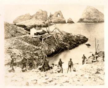 FARALLON ISLANDS EGG WARS - WikiName