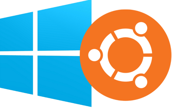 Ubuntu 13.10 Saucy Salamander y Windows 8.1