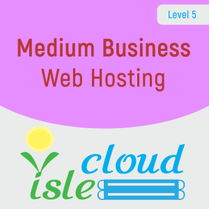 L5 - Medium Business Web Hosting