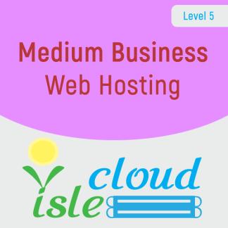 L5 - Medium Business Web Hosting