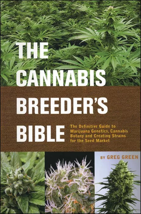 , Cannabis Seeds and Basic Breeding