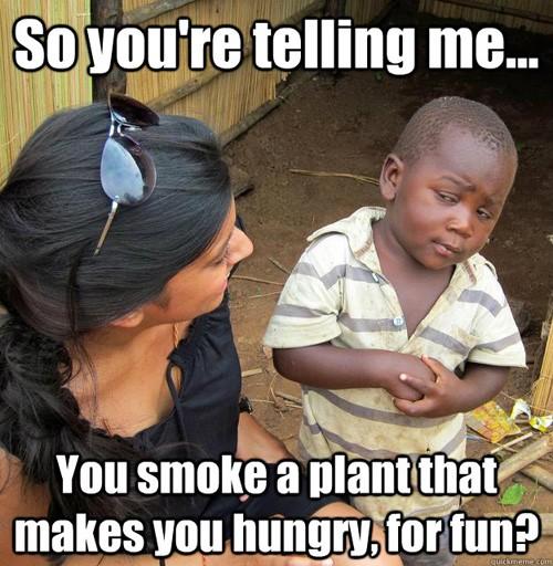 , Top Funny Cannabis Memes