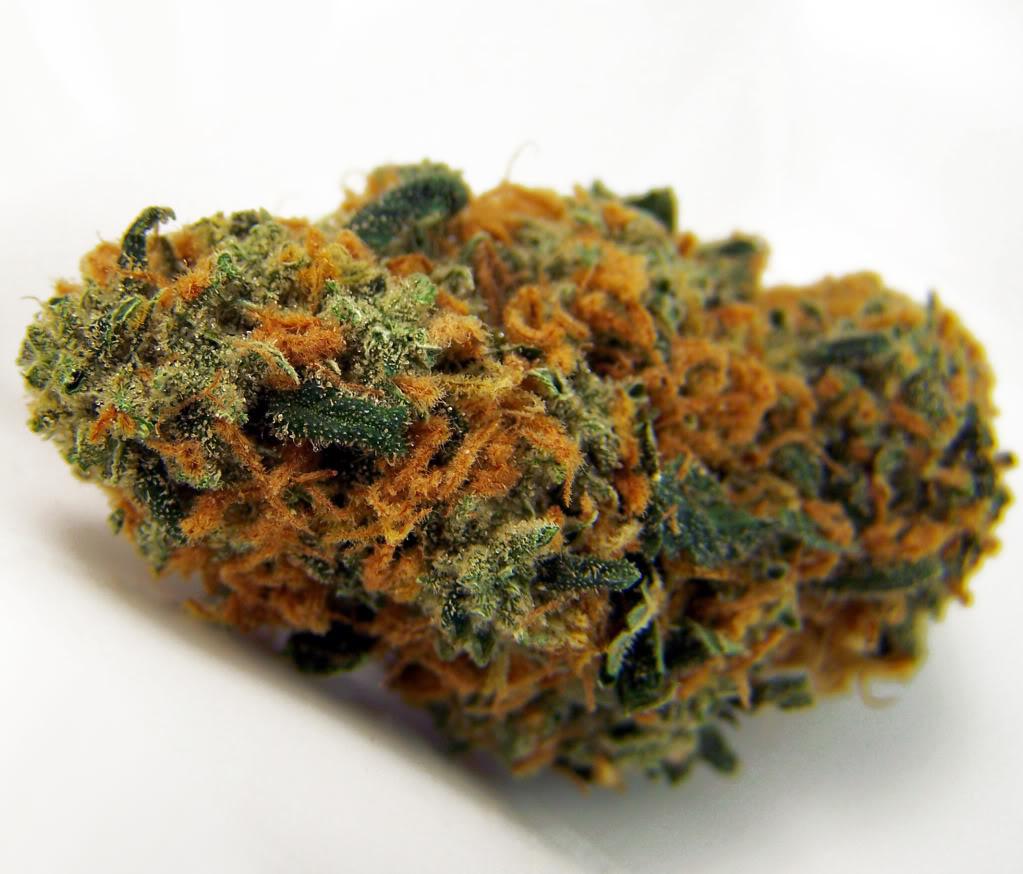 , Cannabis Strain Spotlight: Strawberry Cheese, ISMOKE