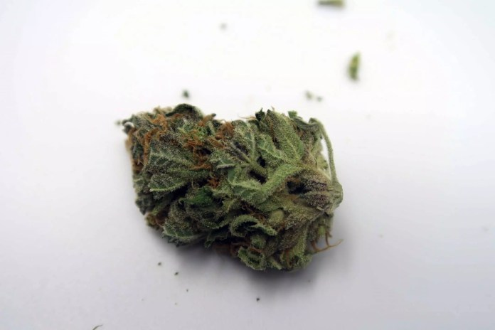 Candy Cream, Candy Cream Cannabis Strain Review