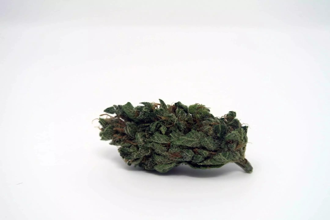 , Cherry Bomb Cannabis Strain Review, ISMOKE