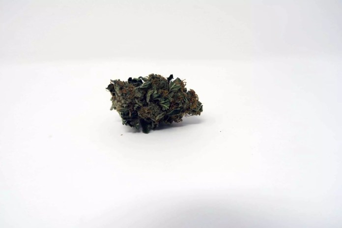 Platinum Girl Scout Cookies, Platinum Girl Scout Cookies Strain Information