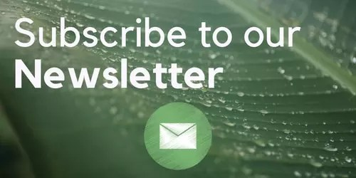 Subscribe to our newsletter here