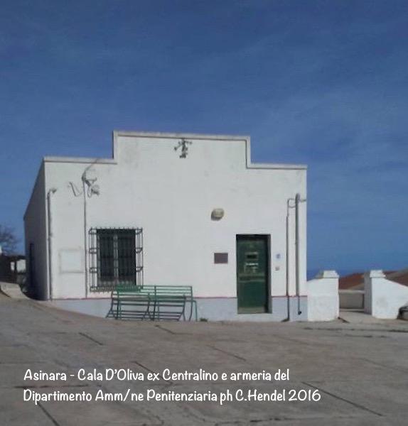 Approfondimento Isola Asinara