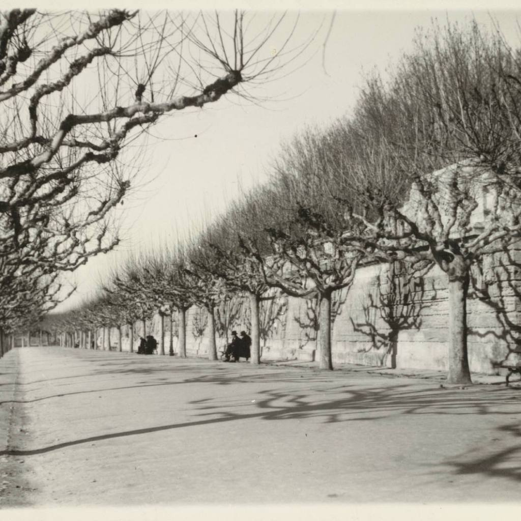Past & Present: Photographs of Montpellier, France 6