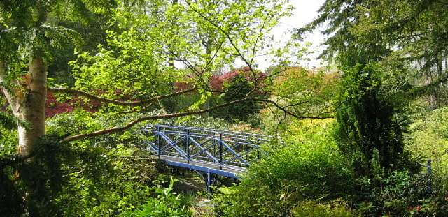 Johnston_Gardens, bridge