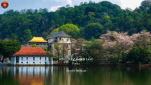 Kandy Lake Facts