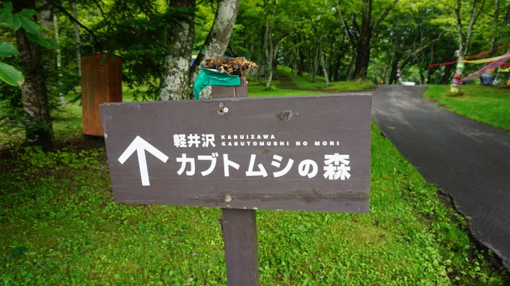 迷いながらも軽井沢カブトムシの森に行ってきました