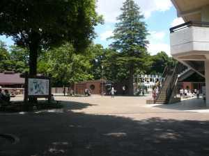 市川市動植物園にはフードコートがある