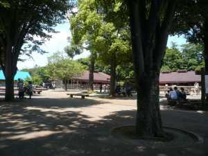 市川市動植物園の駐車券で割引