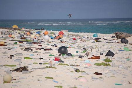 Beach_strewn_with_plastic_debris