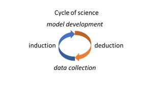 data collection-model development cycle