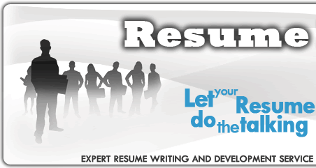 monster india resume writing review structure of a literature