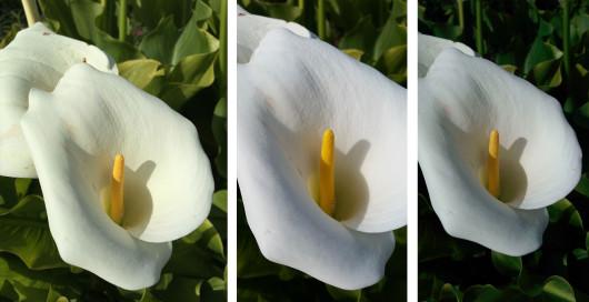 5s_m8_s5_photo_comparison_14