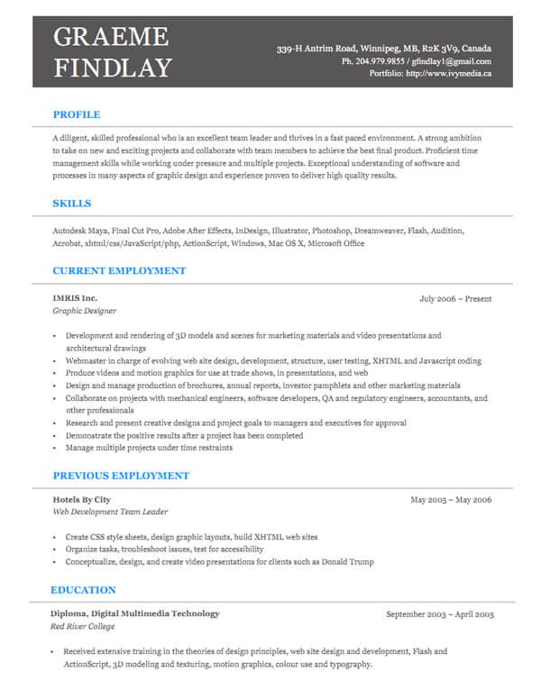 Example Resume Game Programmer. php programmer resume format sales ...