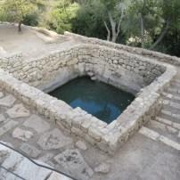 Sataf Pool