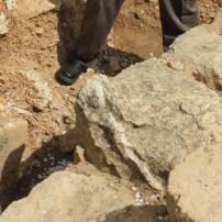 Altar Horn stone