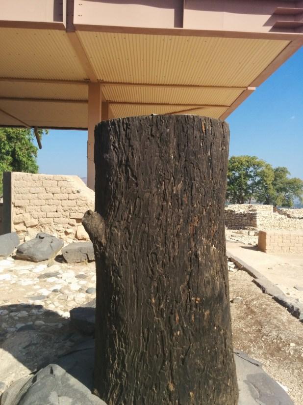 Yavin's Palace - wooden column