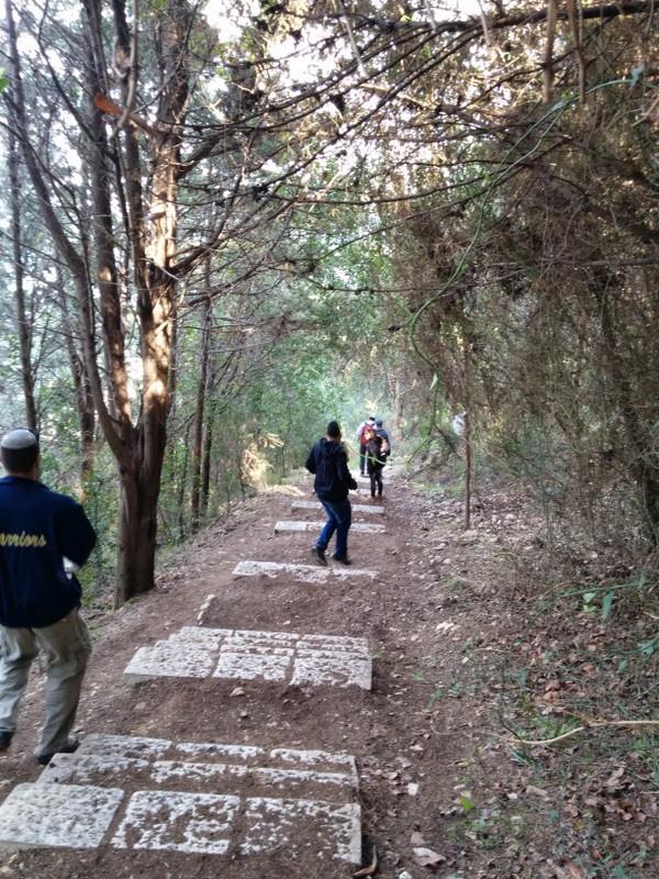 Descending Mount Carmel